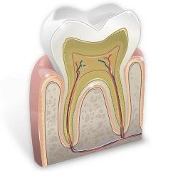 Зубная поликлиника - какую именно выбрать?